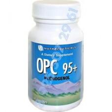 ОРС 95+ Пикногенол (OPC 95+ Pycnogenol)